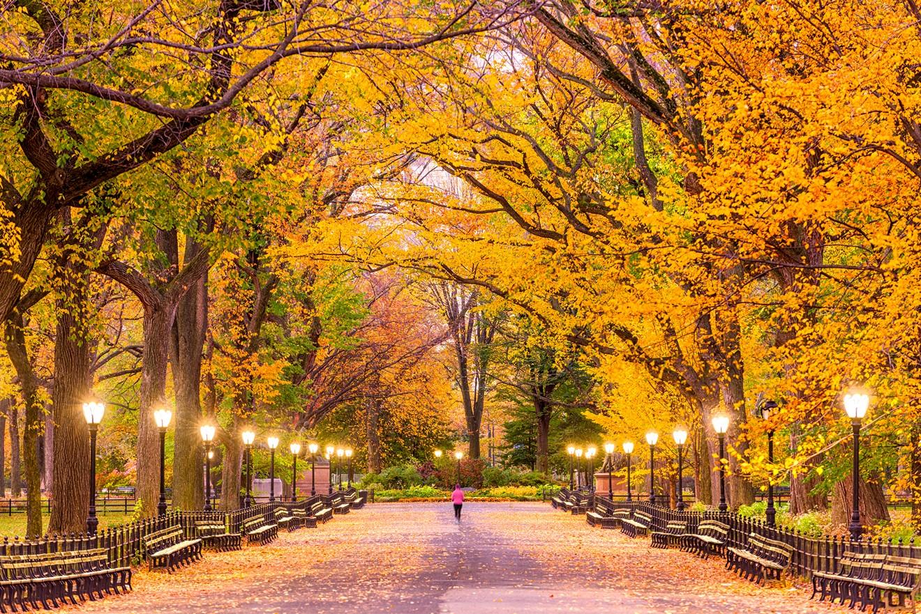 Manhattan fall